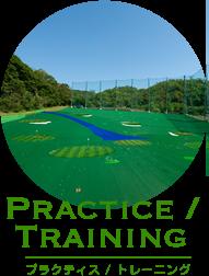 プレクティス / トレーニング
